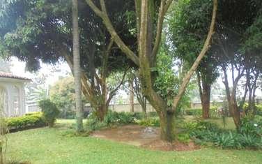 4 bedroom house for rent in Nyari