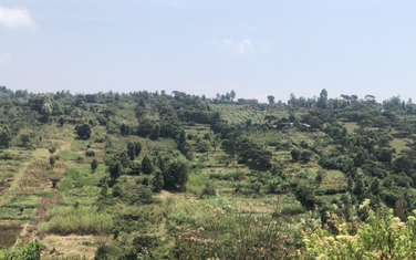 8093 m² commercial land for sale in Kieni