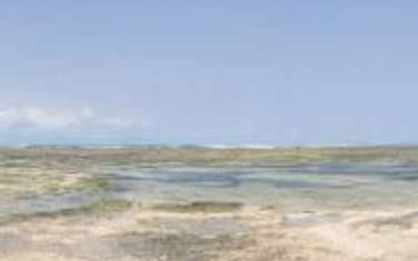 866058 m² commercial land for sale in vipingo