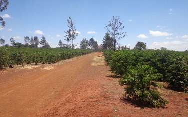 1768539 m² commercial land for sale in Ruiru