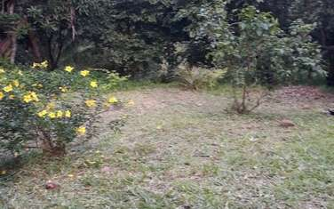 80940 m² commercial land for sale in the rest of Kwale