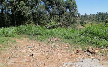 1012 m² commercial land for sale in Ruaka
