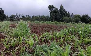 Land for sale in Kikuyu Town