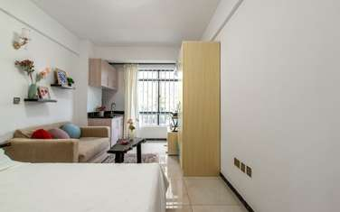 Furnished studio apartment for rent in Kilimani