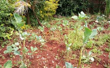 94 m² land for sale in Ruaka