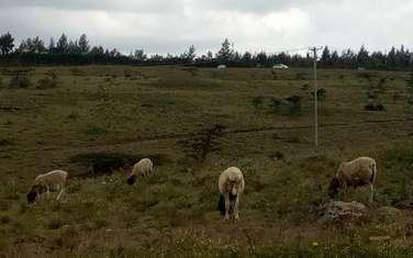 460 m² land for sale in Kiserian