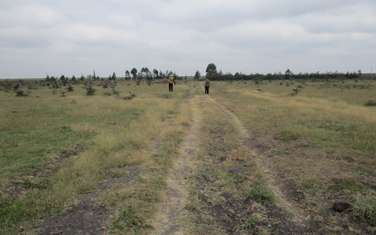 0.25 ac residential land for sale in Ongata Rongai