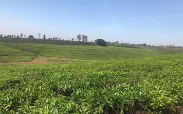 Land for sale in Cianda