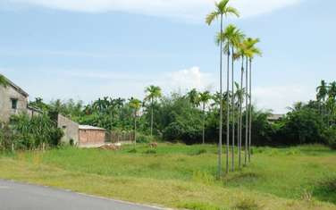 239 m2 Residential Land for sale in Vung Tau