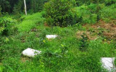 18000 m2 farm land for sale in District Dinh Quan