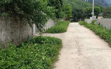 18000 m2 residential land for sale in District Hoanh Bo