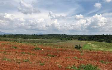 95000 m2 farm land for sale in District Dak Song