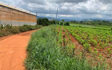 1000 m2 land for sale in District Lam Ha