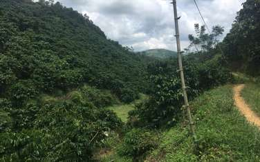 13000 m2 farm land for sale in District Bao Lam