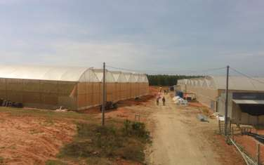 15000 m2 Agricultural Land for sale in District Bac Binh