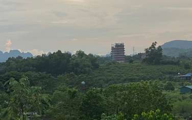 360 m2 residential land for sale in District Luong Son
