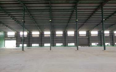factory & warehouse for rent in District 11