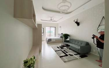 1 bedroom apartment for rent in Thanh pho Bien Hoa