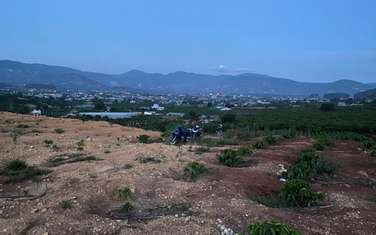 500 m2 land for sale in District Lam Ha