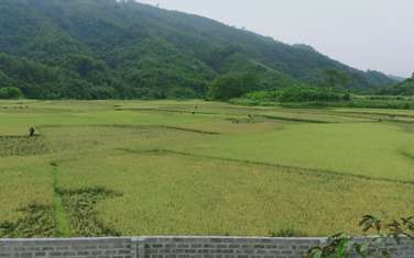 6000 m2 residential land for sale in District Luong Son