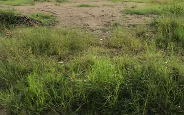 2500 m2 farm land for sale in District Nha Be
