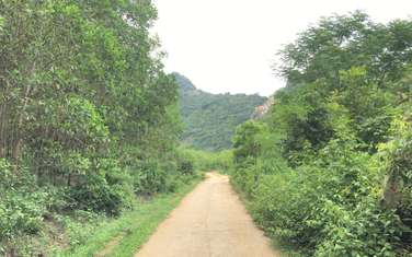 3250 m2 residential land for sale in District Hoanh Bo