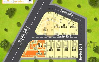 294 m2 residential land for sale in District Phu Loc