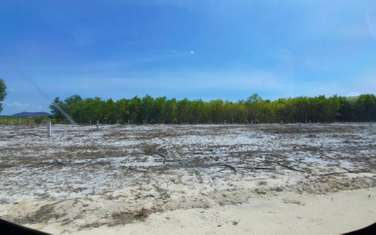 13000 m2 Agricultural Land for sale in Thi xa Lagi
