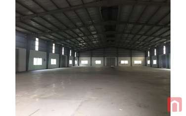 factory & warehouse for rent in District My Hao