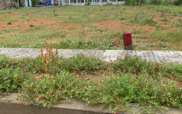 147 m2 residential land for sale in District Dai Loc