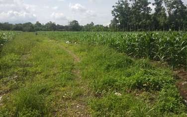 417 m2 farm land for sale in Thi xa Long Khanh