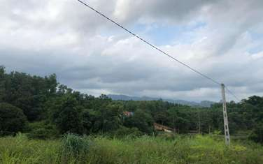 1100 m2 residential land for sale in District Hoanh Bo