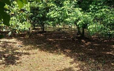 4000 m2 farm land for sale in Thi xa Long Khanh