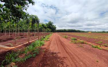 1000 m2 farm land for sale in District Binh Long