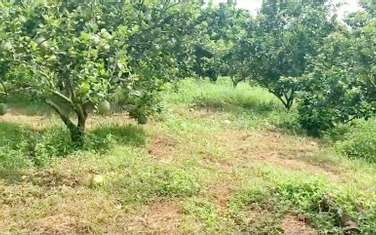 14475 m2 residential land for sale in District Dinh Quan