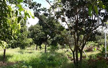 1000 m2 farm land for sale in District Thong Nhat