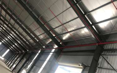factory & warehouse for rent in District Viet Yen