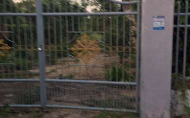 4492 m2 residential land for sale in Cao Lanh
