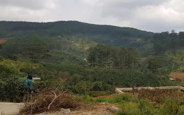 1000 m2 farm land for sale in Thanh pho Da Lat