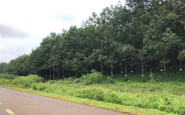 21470 m2 farm land for sale in District Cu Kuin