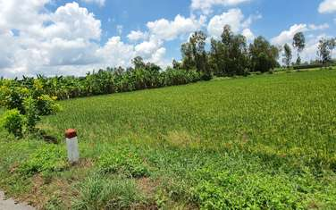 3615 m2 farm land for sale in District Vi Thuy