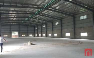 factory & warehouse for rent in District Gia Lam