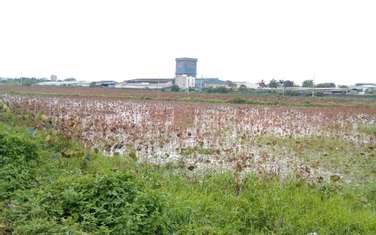 62000 m2 commercial land for sale in District My Hao