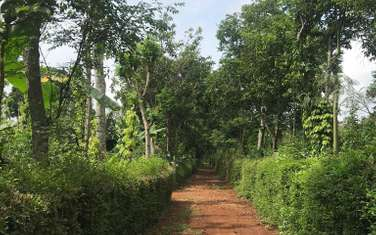 4100 m2 residential land for sale in District Krong Pak