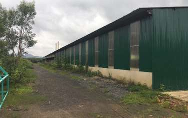 factory & warehouse for sale in District Da Te