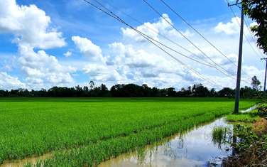 8600 m2 farm land for sale in District Vi Thuy