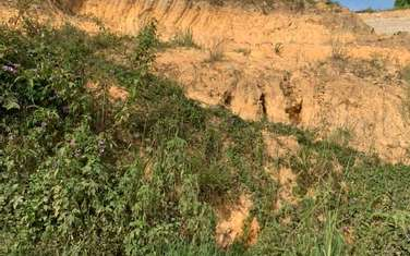 339 m2 residential land for sale in Thanh pho Da Lat
