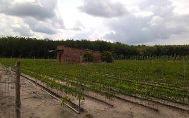 507 m2 residential land for sale in District Hon Quan