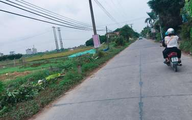 85 m2 residential land for sale in District Van Lam