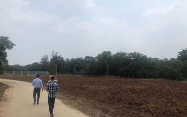 1351 m2 residential land for sale in District Long Thanh